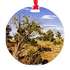 Windswept Arizona Tree Ornament