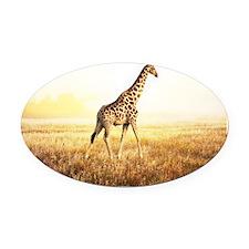 Giraffe Oval Car Magnet