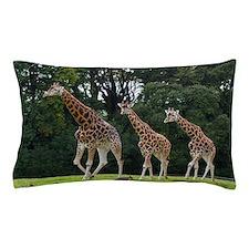 Giraffes family in the wildlife park Pillow Case