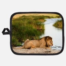 Lion On A Watering Place Potholder