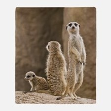 Meerkat Family Throw Blanket