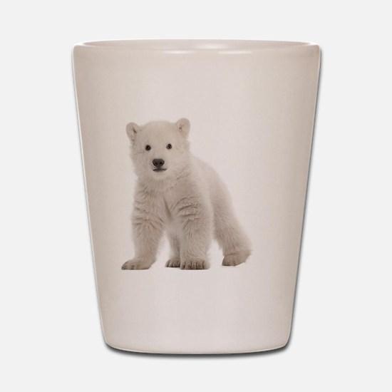 Polar bear cub Shot Glass