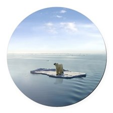 Polar Bear on Ice Round Car Magnet