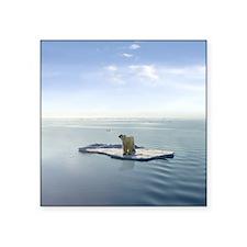 "Polar Bear on Ice Square Sticker 3"" x 3"""