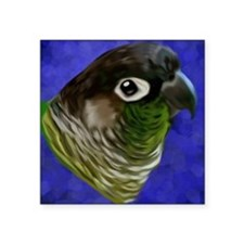 Green Cheek Conure Sticker