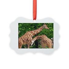 The giraffe Ornament