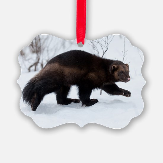 Wolverine in the snow Ornament