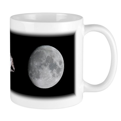 Apollo Panorama Mug