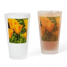 Pretty California Poppies Drinking Glass