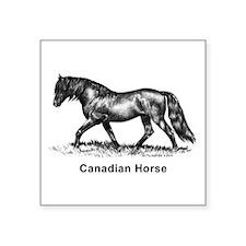 "Canadian Horse Square Sticker 3"" x 3"""