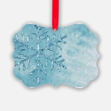 glass snowflake Ornament