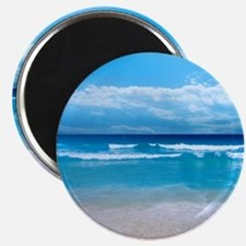 Tropical Wave Magnets