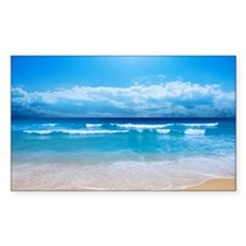 Tropical Wave Decal