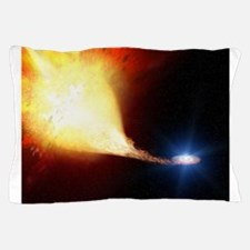 Astronomers Pillow Case