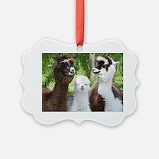 Three different alpacas Ornament