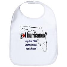 Got Hurricanes? Bib