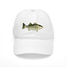 Striped Bass Baseball Cap