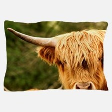Europe, England, Yorkshire, Highland C Pillow Case