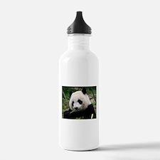 Cute Giant panda Water Bottle