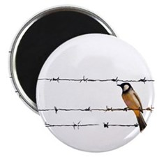 Bird on a Wire Magnets