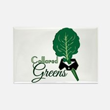 Collared Greens Magnets