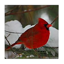 Christmas Cardinal Tile Coaster