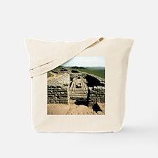 Housesteads. Hadrian's Wall. Roman urinal Tote Bag