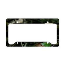 white mushroom License Plate Holder