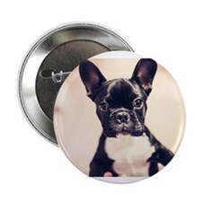 "French Bulldog 2.25"" Button (10 pack)"