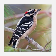 Downy Woodpecker Tile Coaster