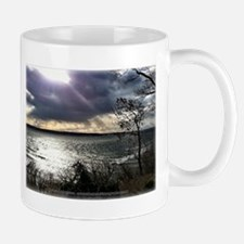 Unbelievable Secret View Mugs