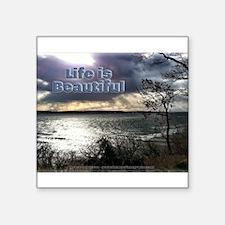 Unbelievable Secret View - Life Is Beautiful Stick