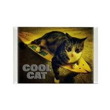 Skateboarding Cat - Cool Cat Magnets