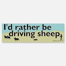 Driving Sheep Bumper Bumper Sticker