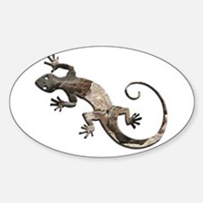 Brown Stone Gecko Decal