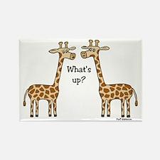 What's up? Giraffe Rectangle Magnet