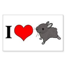 I (Heart) Bunnies! Rectangle Decal