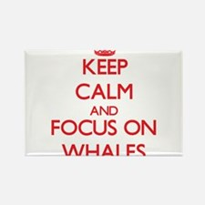 Keep Calm and focus on Whales Magnets