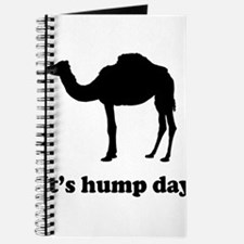 It's hump day Journal