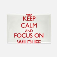 Keep Calm and focus on Wildlife Magnets