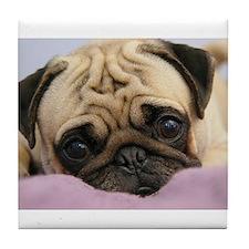 Funny Pug Tile Coaster
