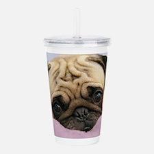 Funny Pug Acrylic Double-wall Tumbler