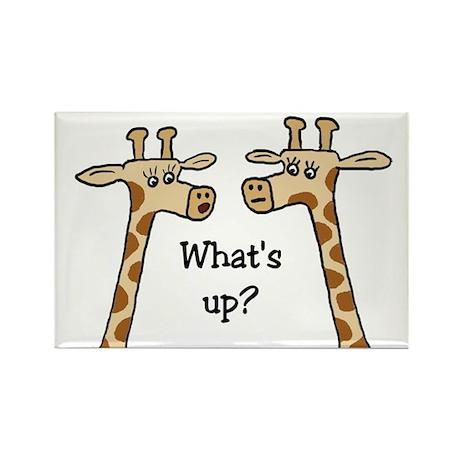 What's up? Giraffe Rectangle Magnet (100 pack)