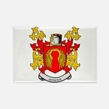 SEYMOUR Coat of Arms Rectangle Magnet