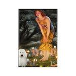 Fairies & Bolognese Rectangle Magnet (10 pack)