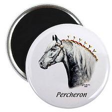 Percheron Magnet