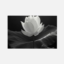 Lotus Flower en Noir Rectangle Magnet