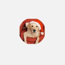 Dog with Christmas hat on armchair Mini Button