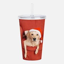 Dog with Christmas hat on armchair Acrylic Double-