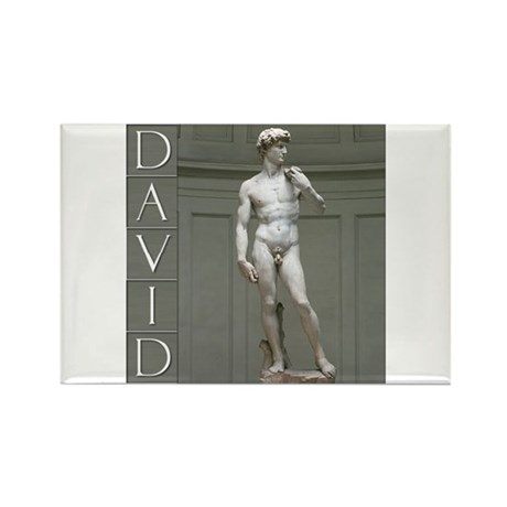David Rectangle Magnet